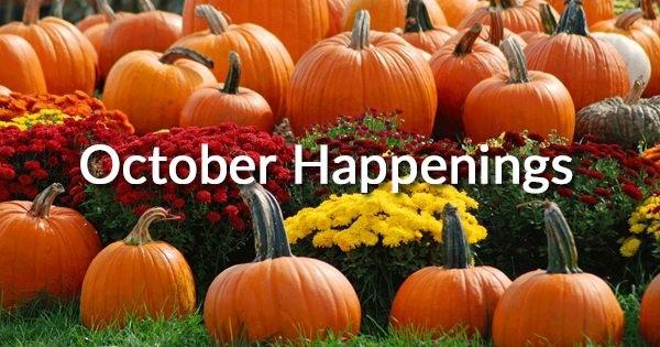 Newsletter – October 2018